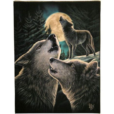 Lisa Parker Wolf Song Canvas (Small) (Multicoloured)