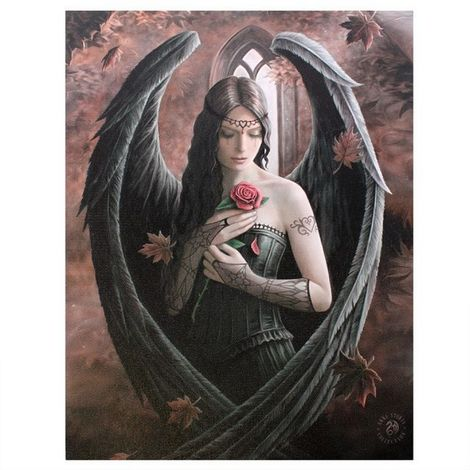 Anne Stokes Angel Rose Canvas (Small) (Multicoloured)