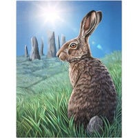 Lisa Parker Small Solstice Canvas (One Size) (Multicoloured)