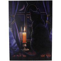 Lisa Parker Midnight Vigil Canvas (Small) (Multicoloured)