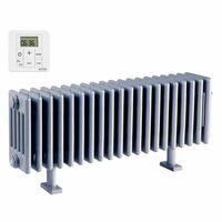 Radiateur électrique ACOVA - VUELTA Plinthe 1000W avec régulation - inertie fluide - TMC03-100-100/GF