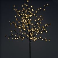 Tree light, branch light