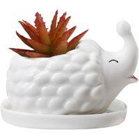 LangRay Hérisson blanc en céramique succulente Pot de fleur Pot de fleur et soucoupe décoration animale fenêtre cadre Pot de fleur(mère hérisson)