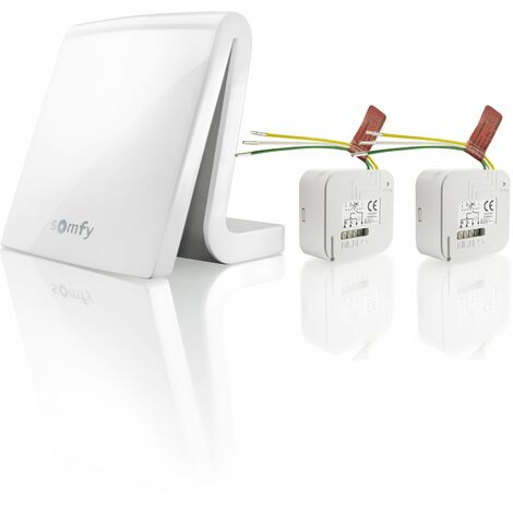 Box domotique Somfy TaHoma avec 2 micro-récepteurs pour éclairage RTS - 1870866