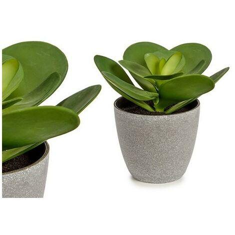 Pot Volet Grand Ronde Plante Vert (17 x 21 x 20 cm)