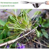 LangRay Hand Weeder Garden Weed Killer 12 Inch Manual Weed Killer Rust proof stainless steel lever base saves effort to remove dandelions, thistles, burdock and other invasive weeds