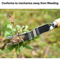 LangRay Manual Weed Killer Tool Stainless Steel Weed Gouge with Wood Handle Garden Weed Tool, 2 Types Garden Weed Killer Handy Tool (A)