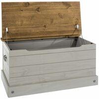 Coson Grey Storage Trunk