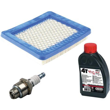Filtre à air + bougie d'allumage + huile moteur pour le moteur Briggs et Stratton Quantum