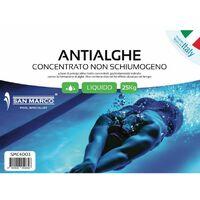 Antialghe San Marco liquido concentrato non schiumogeno 25Kg