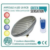 PAR56 RGB 18 x 3W LED con control remoto color piscina bombilla