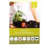 Kit loisir créatif - Bouteille terrarium - 5L - Livraison gratuite