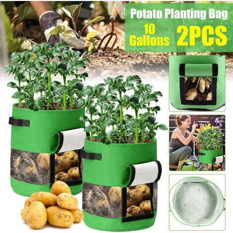 10 gallons Big Plant Plant Plant Grow Bags Pot Outils de jardinage pour la maison Sac de croissance de pommes de terre