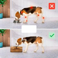 Bols Nobledog pour chiens, chats, bois de pin, station d'alimentation, bols en acier inoxydable, support de bol alimentaire:2 x 0.3 L