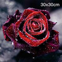 Creative 5DIY plein diamant peinture roses decoration de la maison peinture artisanat 40x40 cm