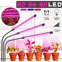 Plantas de interior 30W 60LEDS Luz de invernadero hidropónico regulable