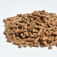Poudre d'os, engrais naturel phosphore et calcium. Seau 8 kg