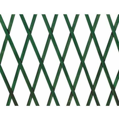 TRALICCIO IN PLASTICA VERDE PER PIANTE RAMPICANTI DA TERRAZZA BALCONE 16339V 2X1 (16339)
