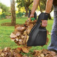Pelle à feuilles par 2