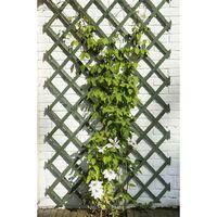 Nature Palissades de jardin 2 pcs Bois Vert 50 x 150 cm