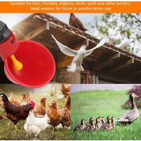 LITZEE 10 PCS Abreuvoir Poules Abreuvoir à Poulet en Plastique Automatique Abreuvoir à volaille Kit Distributeur d'eau Potable Bols Systèmes d'alimentation en Eau pour cailles d'oiseaux Pigeon Poulet