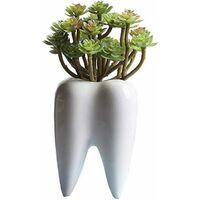 LITZEE Blanc Pots de jardinière à dents mignonnes Pots de jardinières à dents succulentes Pots Cactus en céramique créatifs Mini contenants de plantes à fleurs comme décoration de maison et de bureau Pots de fleurs Cadeaux
