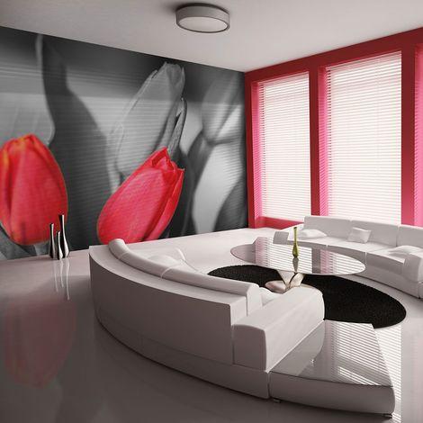 Papier peint - Tulipes rouges sur fond noir et blanc 250x193