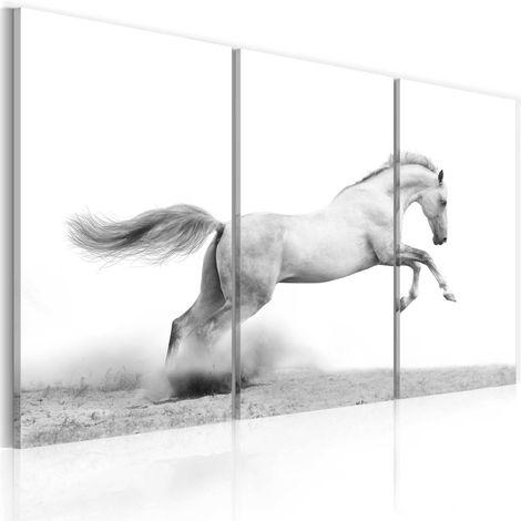 Tableau - Cheval au galop 60x40