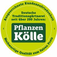 Kölle's Beste Balkon- und Beetpflanzen-Dünger mit Humat 1 l