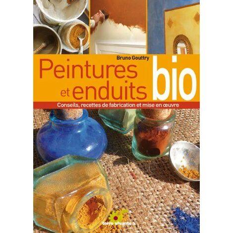 Peintures et enduits bio : Conseils, recettes de fabrication et mise en oeuvre