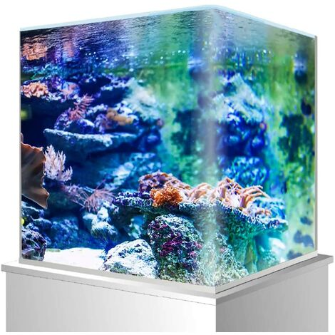 Amtra Cuve Nano Tank Aquarium pour Aquariophile 60