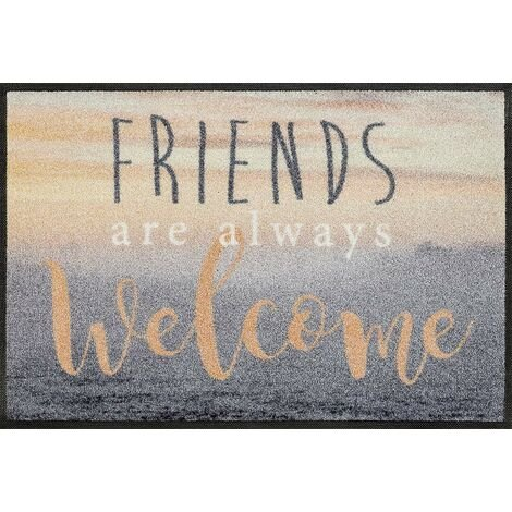 Wash+Dry Welcome Friends Tapis, Surface en Polyamide, Coloré, 50/75