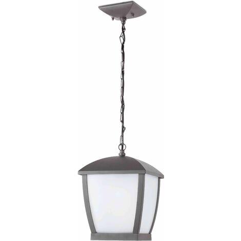 Wilma gray garden pendant light 1 bulb