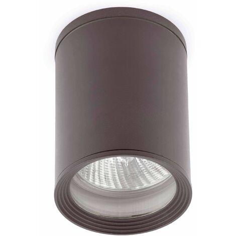 Tasa dark gray garden ceiling light 1 bulb
