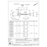 VIS PENTURE TORX T30 INOX A2 6X50 LAQUE BLANC RAL9016/BLANC SIGNALISATION   Conditionnement: Unitaire