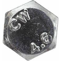 SWG Vis á métaux avec écrou M10 x 120, zinguée, DIN 601
