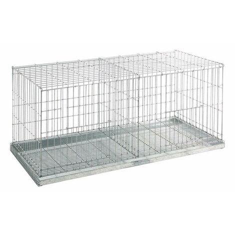 Exposition pigeons en cage 2 départements