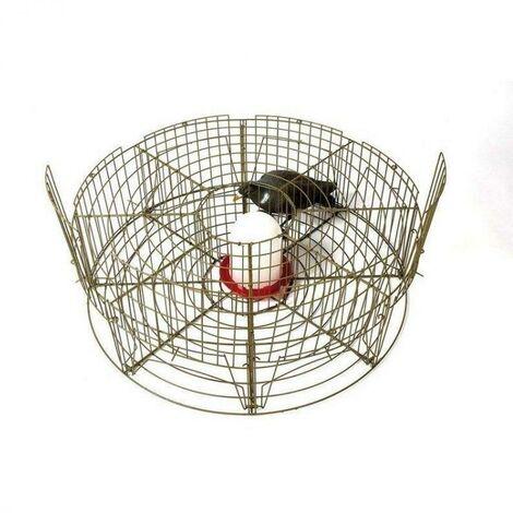 Cage capture 8 pigeons départements