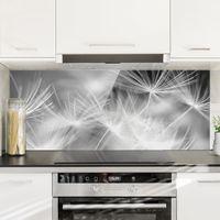 Crédence en verre - Moving Dandelions Close Up On Black Background - Panorama Dimension: 40cm x 100cm