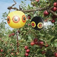 Ballon effaroucheur d'oiseaux x2