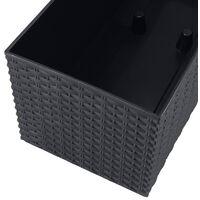 PROSPERPLAST Jardinière rectangulière noir arrosage automatique 17l.