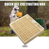 Apicoltura Strumenti - cartuccia di coltivazione regina
