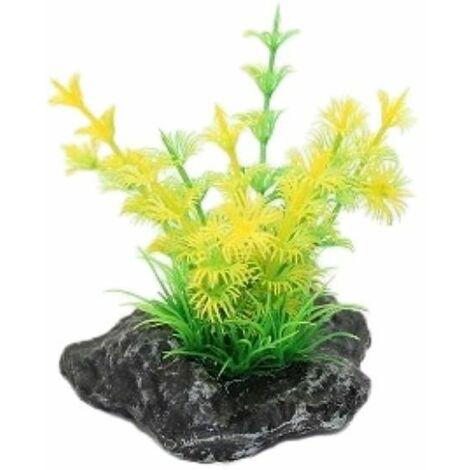 A4070099 - Superfish Pico Garden 1