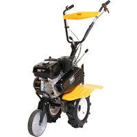 Motoazada de gasolina FX815 TG