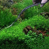 Perle rare Ciseaux à plantes, ciseaux professionnels à plantes d'aquarium en acier inoxydable cisaillement à vague en acier inoxydable longueur totale 210 MM