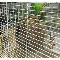 Perle rare Nid d'oiseau nid de perroquet nid de paille nid d'élevage Cage de coquille de noix de coco naturelle peut garder les animaux de compagnie perroquet Canari Pigeon Hamster
