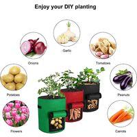 Perle rare 7 gallons Sac de plantation de pommes de terre Sac de culture de plantes Sac de plantes en plastique pour pommes de terre, tomates, herbes, etc. Vert Noir 2 pièces