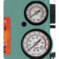 Mini Compresor Fenix S-100