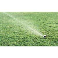"""5 Irrigatori Rain Bird MaxiPaw 1/2 e 3/4"""" + chiave inglese"""
