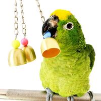 Hanging Bird Parrot Toy Swing Shredding Chew Perch Cage Parrots Toy Conures Parakeets Cockatiels Quill Macaws Mynah Budgies (6-Pack)